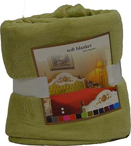 Fancy Collection Luxury Micro-Fleece Ultra Plush Solid Blanket (Queen, Light Green) front-806041
