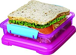Oliveware Mid Day Meal Day Snacks & Sandwich Box (SNB2)