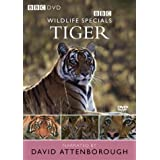 Wildlife Specials: Tiger [DVD]by Kate de Pury