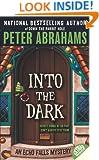 Into the Dark (Echo Falls Mystery)