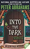 img - for Into the Dark (Echo Falls Mysteries) book / textbook / text book