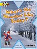 Project X: Weather: What's the Weather Like Today? (019847069X) by Llewellyn, Claire