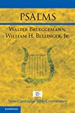 Psalms (New Cambridge Bible Commentary)