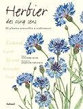 echange, troc Yves-Marie Allain - Herbier des cinq sens : 35 plantes à redécouvrir par les sens
