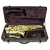Signature Music Brass Alto Saxophone Sax Brand New With Case 2710L ~ Signature Music...