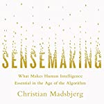 Sensemaking: What Makes Human Intelligence Essential in the Age of the Algorithm | Christian Madsbjerg