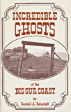 Search : Incredible Ghosts of the Big Sur Coast (Incredible ghosts series)