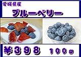 愛媛県産 ブルーベリー 12パック【送料無料】 ランキングお取り寄せ