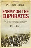 Enemy on the Euphrates: The British Occupation of Iraq and the Great Arab Revolt, 1914-1921