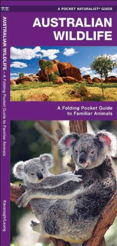 Australian Wildlife: A Folding Pocket Guide to Familiar Species (Pocket Naturalist Guide Series)