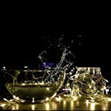 UKSOLAR 10m 100 LED Fairy Light Warm White 32V 8W Low Voltage Safe Christmas Fairy Lights Perfect Xmas New Year Indoor Decoration Ideal for childrens room, living room, bedroom, balcony, terrace, garden, gazebo, etc