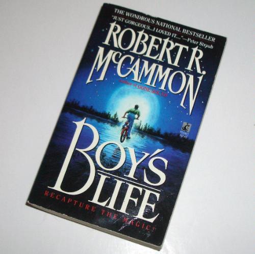 Boys life by robert mc cammon essay