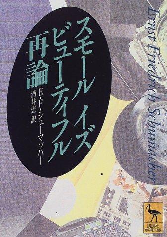 スモール・イズ・ビューティフル再論 (講談社学術文庫)