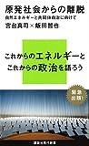 原発社会からの離脱——自然エネルギーと共同体自治に向けて (講談社現代新書)
