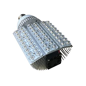 Brightsky E40 54w White LED Street Lamp Courtyard Wall Pack Canopy Bulb Retrofit Light Model C ...