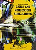 img - for Gangs and Adolescent Subcultures (Revised First Edition) book / textbook / text book