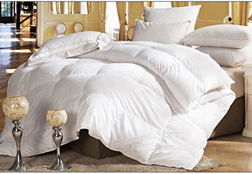 Best Review Of Merax White All Season Down Alternative Comforter Box Stitched Light Weight Super Sof...