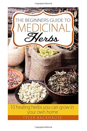 The Beginners Guide to Medicinal Herbs: 10 healing herbs you can grow in your own home