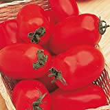 Suttons Seeds 180540 Tomato F1 Incas Seed