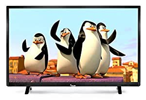 Melbon 81.3 cm (32 inches) E32DF2010 HD Ready LED TV (Black)