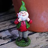 Terry the Green Hatted Toadstool Collecting Gnome Garden Ornament