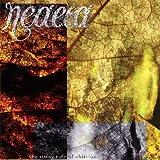 "The Rising Tide of Oblivionvon ""Neaera"""