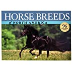 Horse Breeds of North America Book