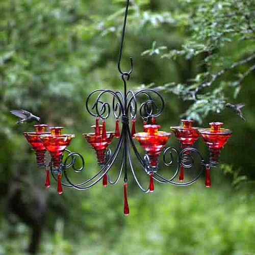 Blown glass chandelier discount parasol grchglfr grand chandelier parasol grchglfr grand chandelier hummingbird feeder flame red review mozeypictures Choice Image