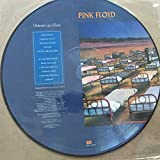 A momentary Lapse of Reason - PICTURE VINYL DISC
