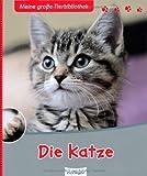 Die Katze (Meine große Tierbibliothek)