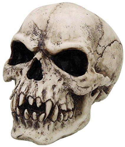 Vampire Skull Teschio decorativo standard