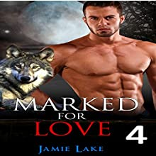 Marked for Love, Book 4 Audiobook by Jamie Lake Narrated by James Talbot