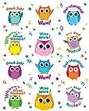 Carson Dellosa Colorful Owl Motivators Motivational Stickers