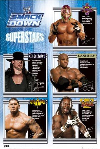 wwe-smackdown-superstars-film-tv-poster-61x915cm