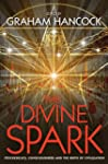 The Divine Spark: Psychedelics, Consc...