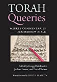 img - for Torah Queeries: Weekly Commentaries on the Hebrew Bible book / textbook / text book