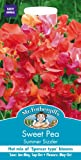 Mr. Fothergill's 19192 25 Count Summer Sizzler Tall Sweet Pea Seed