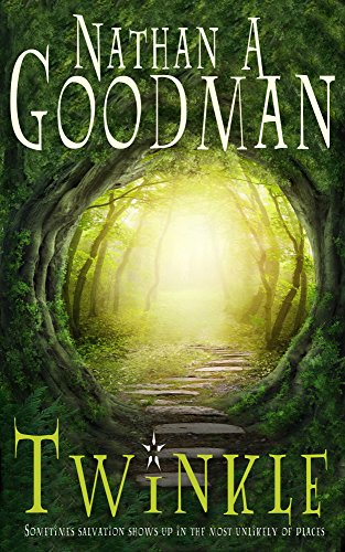 Twinkle by Nathan A. Goodman ebook deal