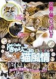 Cat Cafe「きゃりこ」の猫風情 [DVD]