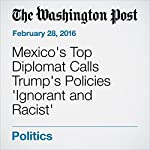 Mexico's Top Diplomat Calls Trump's Policies 'Ignorant and Racist' | Kevin Sullivan,Mary Jordan