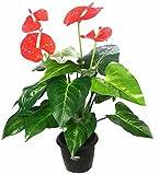 Kusal Wooden Artificial Flower (30.48 cm X 10 cm X 30.48 cm, Green, KPL-1935RD-2)