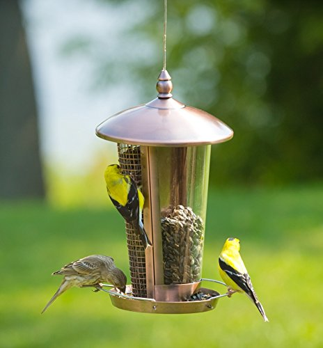 Copper Wild Bird Feeder Attract More Birds Perfect for Garden Decoration, Great Bird Feeders for Small Birds and Medium Size, Easy to Clean and Fill Bird Feeder Hanger Included Great Gift & Fun Idea!