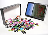 Photo Jigsaw Puzzle of Summer twilight i...