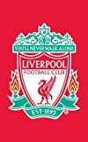 Zap Liverpool FC Rug