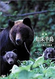 四季・知床半島 ~ヒグマ親子の物語~ [DVD]