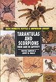 Tarantulas & Scorpions (Reptiles and Amphibians)