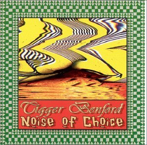 Noise of Choice