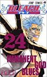 BLEACH―ブリーチ― 24 (ジャンプ・コミックス)