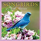 img - for Songbirds of North America 2015 Wall Calendar book / textbook / text book