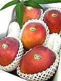 【訳あり】 マンゴーファーム宮古島 宮古島産 アーウィン種 完熟マンゴー ご家庭用 2kg ランキングお取り寄せ
